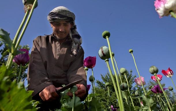 В Афганистане перехватили партию опия на $50 млн