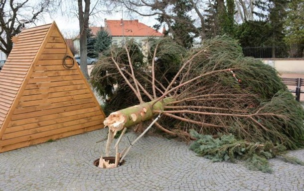 Ветер сломал елку на площади словацкого города