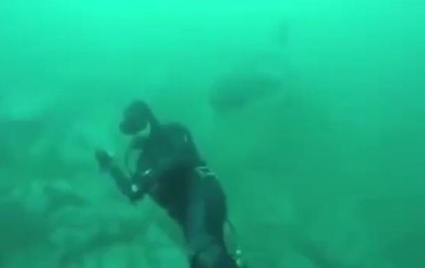Відео з аквалангістом та акулою стало хітом Мережі