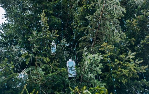 Главную елку Украины украсили гирляндами
