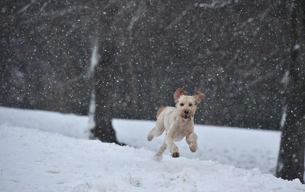 В Украину идут снег и резкое потепление