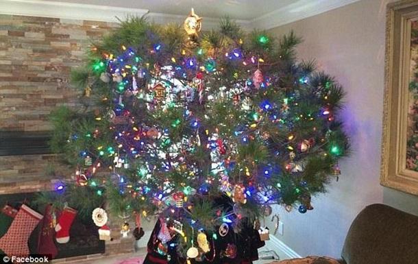 В США семья наряжает одну и ту же елку 34 года
