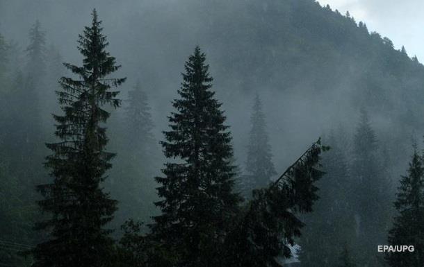 Синоптики попереджають про високу лавинну небезпеку в Карпатах