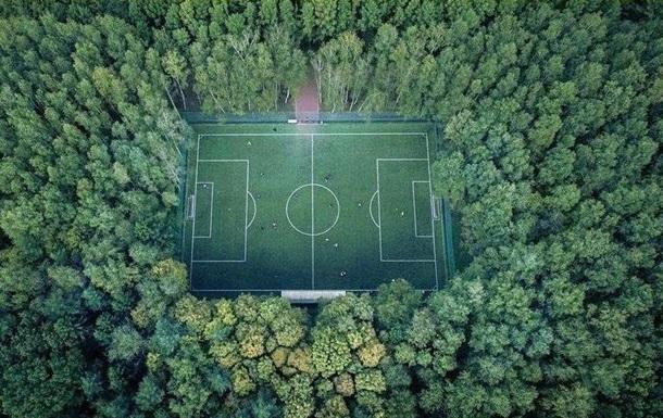 В Україні за рік засадили деревами 54 тисячі гектарів