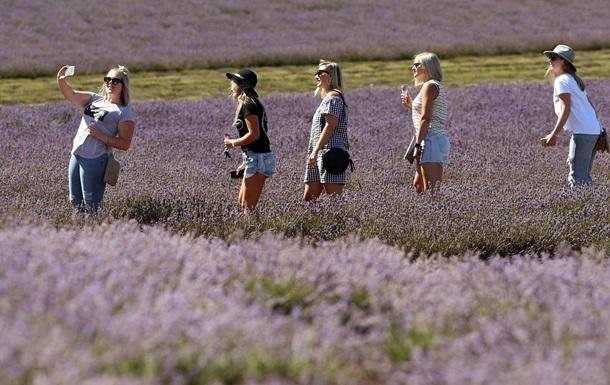 Мировой туризм вырос до максимума семи лет