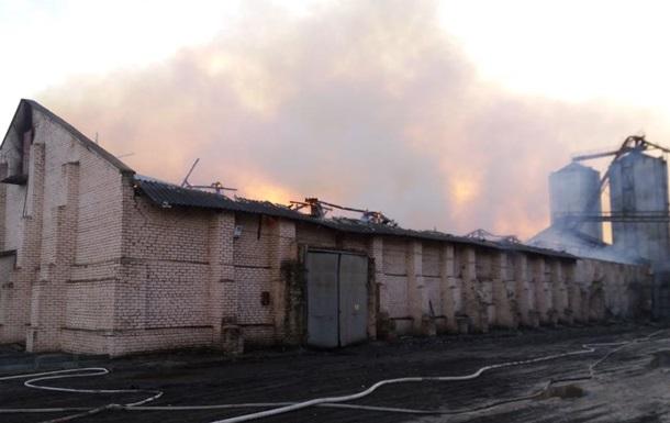 В Николаевской области загорелся маслозавод