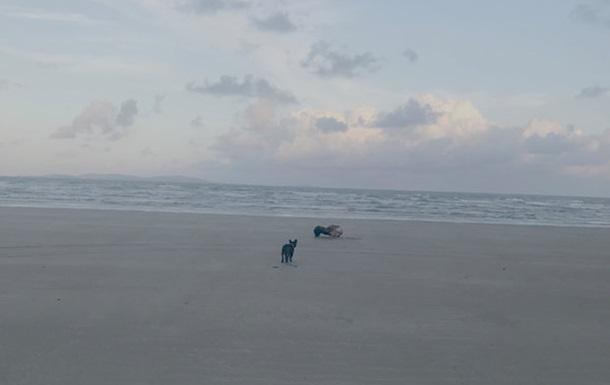 Австралийка обнаружила на пляже безглазое существо