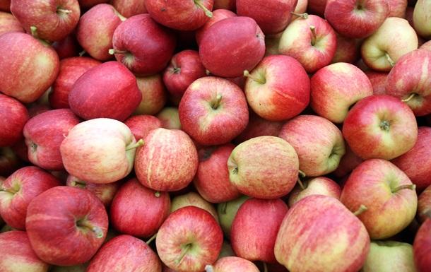 Росія заборонила ввезення фруктів з Білорусі та Сербії