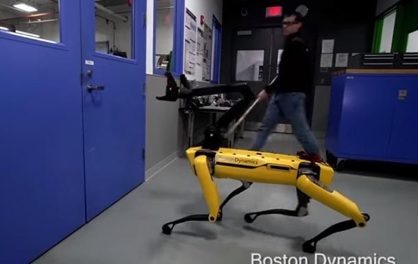 Борьбу человека и робота-собаки сняли на видео