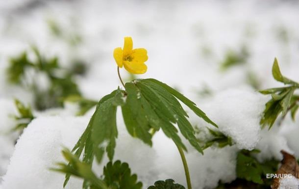 Погода 8 марта: в Украине должно потеплеть