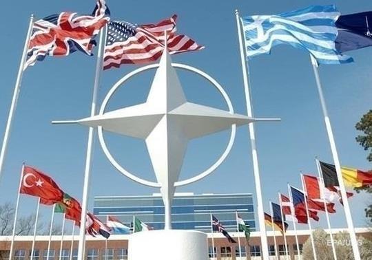 Украине о НАТО думать рано