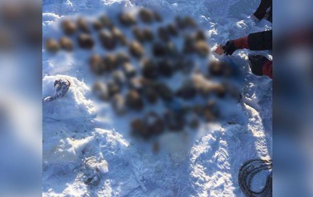 В России из реки выловили 26 пар человеческих кистей - СМИ