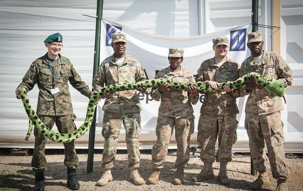 НАТО запугивает Россию учениями у границ