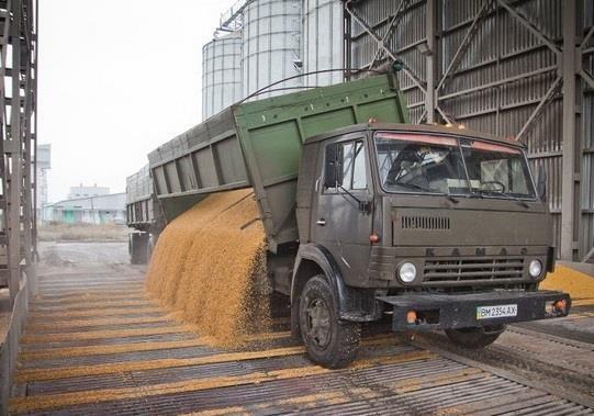 На украинских дорогах возрастает воровство зерновых