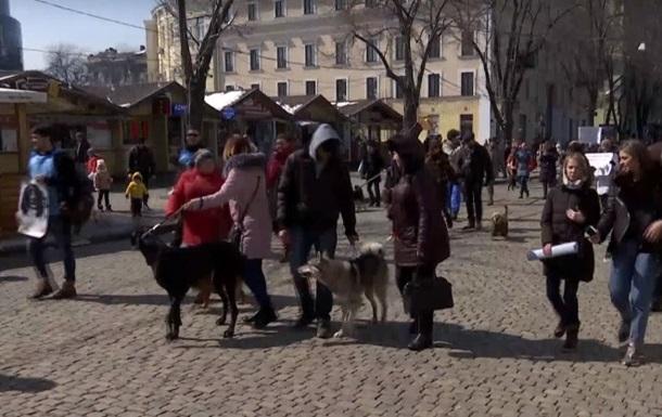В Одессе прошел марш спасенных собак