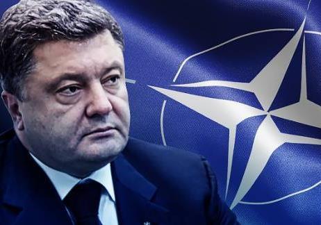 Совмещение президентских выборов и референдума о НАТО несет угрозу раскола