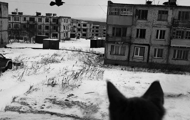 «Украинский Магадан» или золотая жилка Захарченко и Пасечника