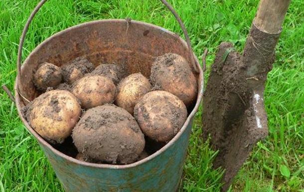 Майские наступают: не картошкой единой
