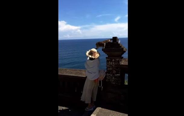 Обезьяна украла смартфон у делающей селфи туристки