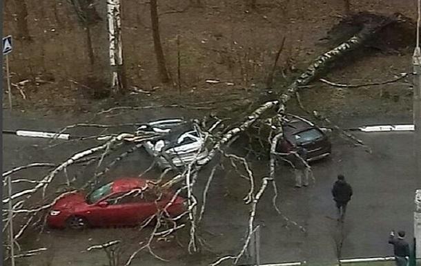 Ураган у Москві: зросла кількість жертв