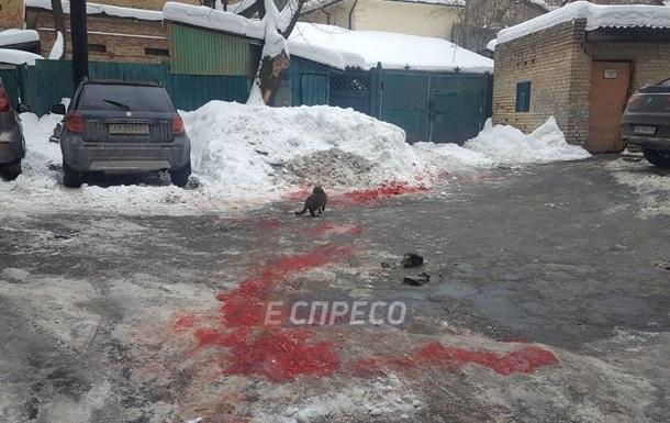 Убийство предпринимателя вцентре столицы Украины раскрыто: силовики задержали подозреваемого