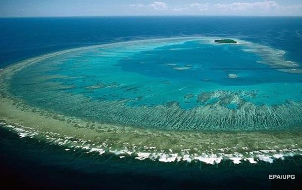 На восстановление Большого Барьерного рифа выделят $380 млн