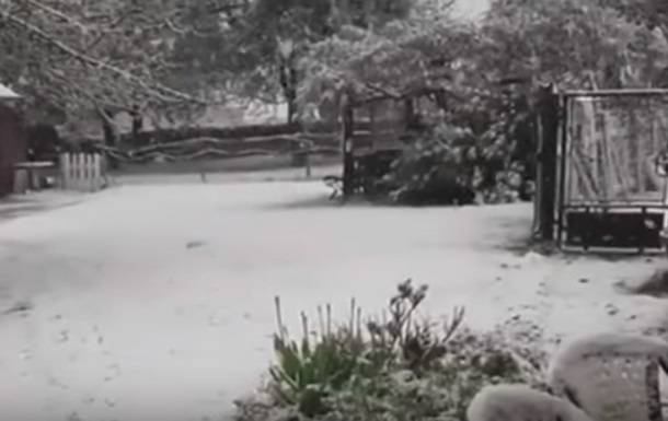 Во Франции выпал снег