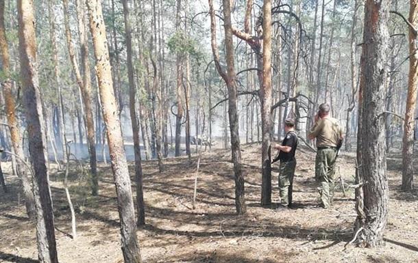 В Луганской области горит пять гектаров леса