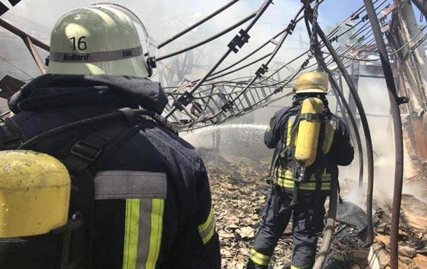 Пожар в столичном Гидропарке ликвидировали - ГСЧС