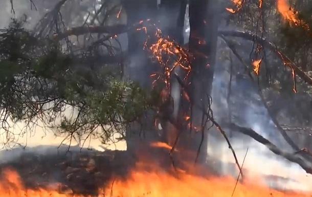 Масштабный пожар в Херсонской области локализовали