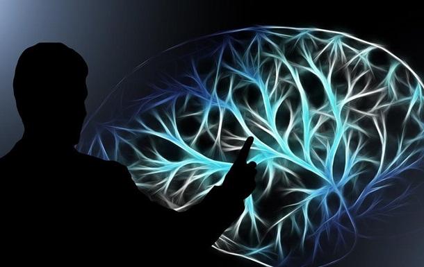 Ученые обнаружили  второй мозг  в организме человека