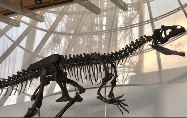 Во Франции продали скелет динозавра за €2 млн