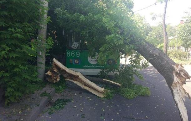В Запорожье на троллейбус упало дерево, есть пострадавшие