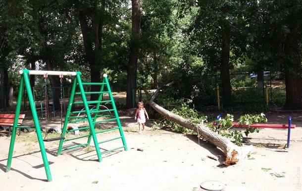 В Одесі на два дитячих майданчики впали гілки дерев