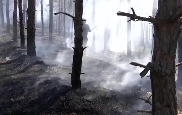 У Херсонській області гасять вісім гектарів лісу