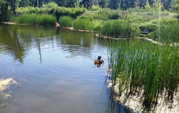 В Черкасской области в затопленном карьере погиб мужчина