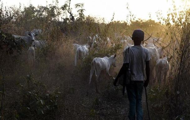 У центрі Нігерії виявили тіла понад 80-ти людей
