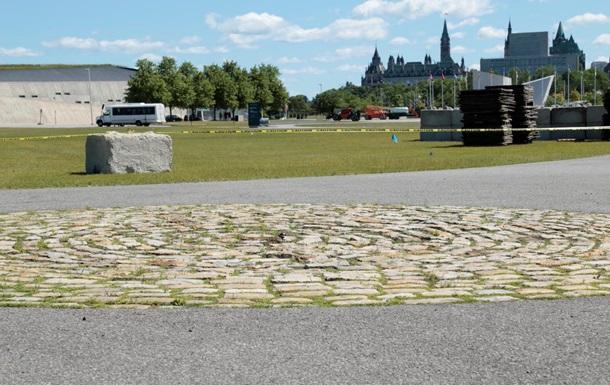 Канадский фестиваль приостановили из-за гнездования редкой птицы