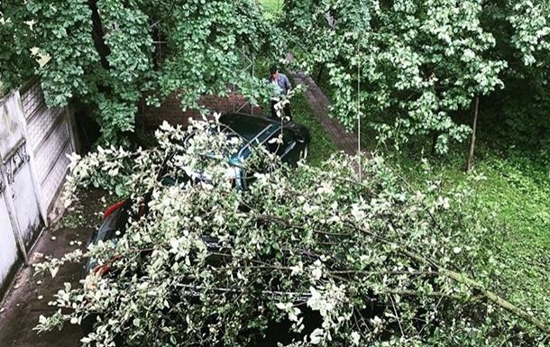 На авто українського музиканта впало дерево