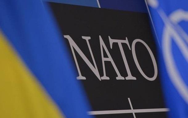 Референдум по НАТО: проводить нельзя отменить