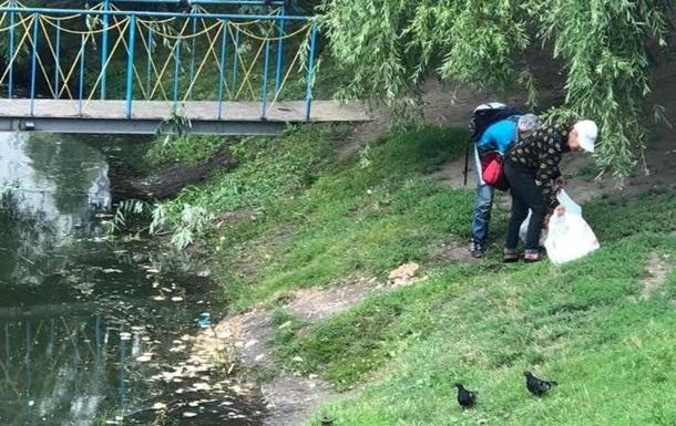 На озері в Києві отруїли диких качок