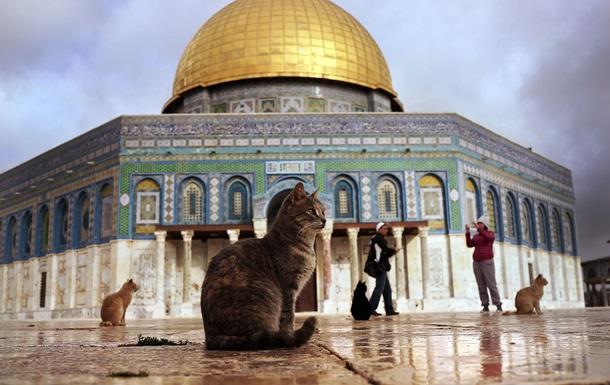 Понизив арабів. Ізраїль прийняв скандальний закон