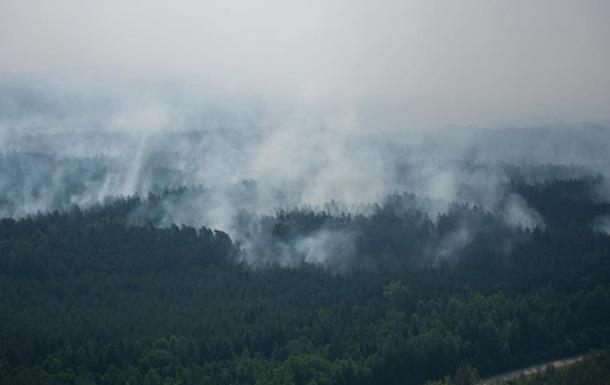 В Латвии бушуют лесные пожары