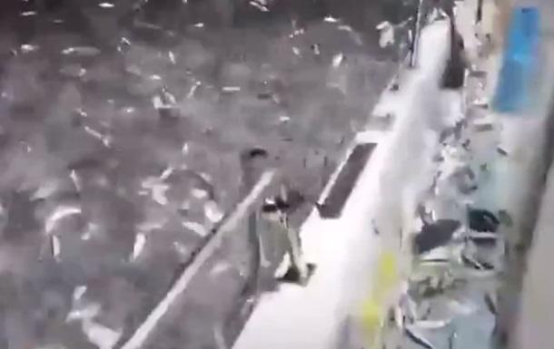 У порту на Тайвані тисячі сардин вискочили з води