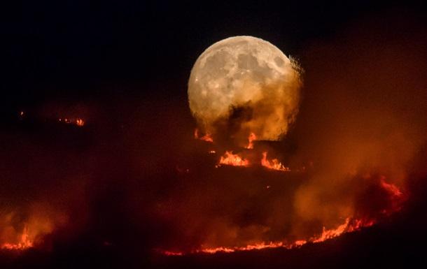 Світ у вогні. Чому прийшла аномальна спека