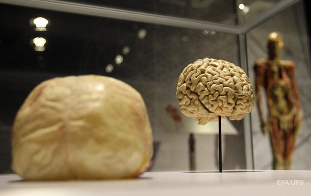 Дитина вижила і адаптувалася після видалення частини мозку