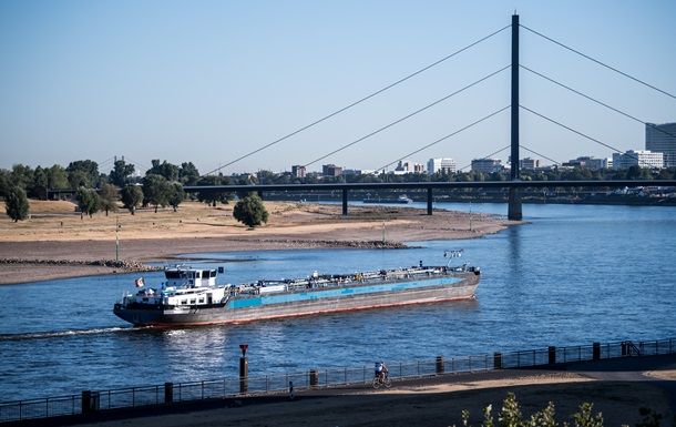 У Рейні через аномальну спеку масово гине риба