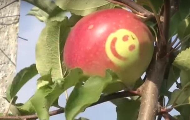 В Україні почали вирощувати яблука зі смайликами