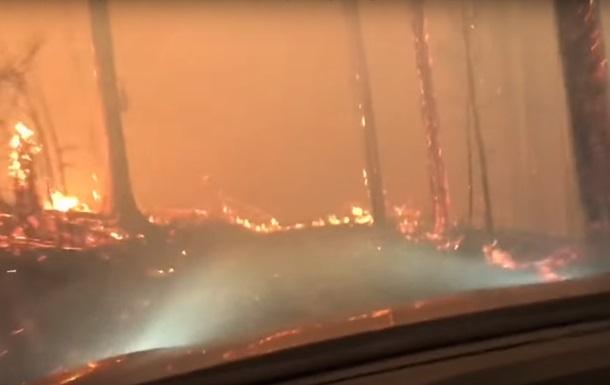 Американцы на авто спаслись от лесного пожара