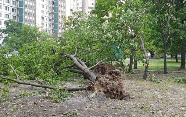 Негода в Києві: повалено 300 дерев, пошкоджено опори ЛЕП